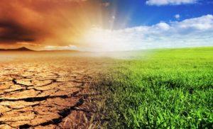 التربة: مورد ضعيف التطور و معرض لعدة إكراهات (التعرية, التصحر..).