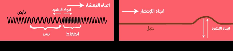 الموجة المستعرضة موجة يكون فيها اتجاه تشويه الوسط عموديا على اتجاة انتشار. الموجة الطولية موجة يكون فيها اتجاه تشويه الوسط على استقامة واحدة مع اتجاه الانتشار.